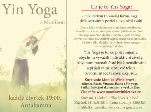 yin yoga antakarana5